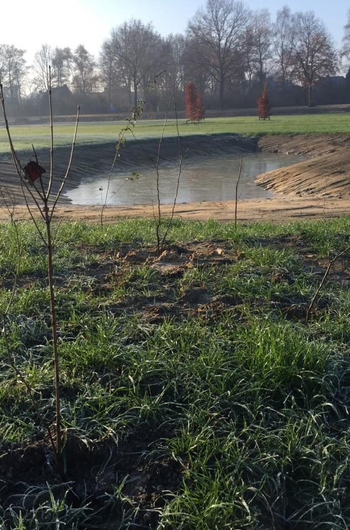 Subsidieregeling Natuur Noord-Brabant