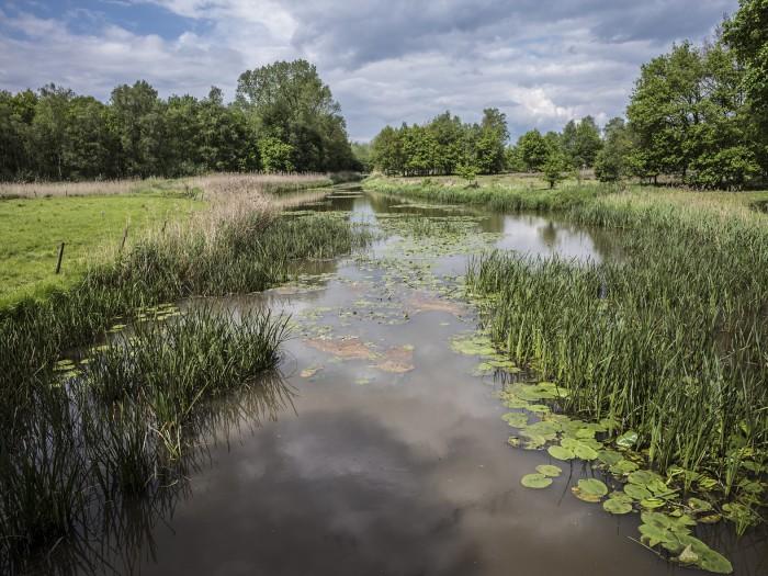 Ecologische verbindingszones